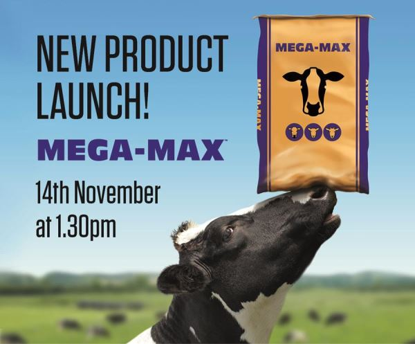 Launch Mega Max